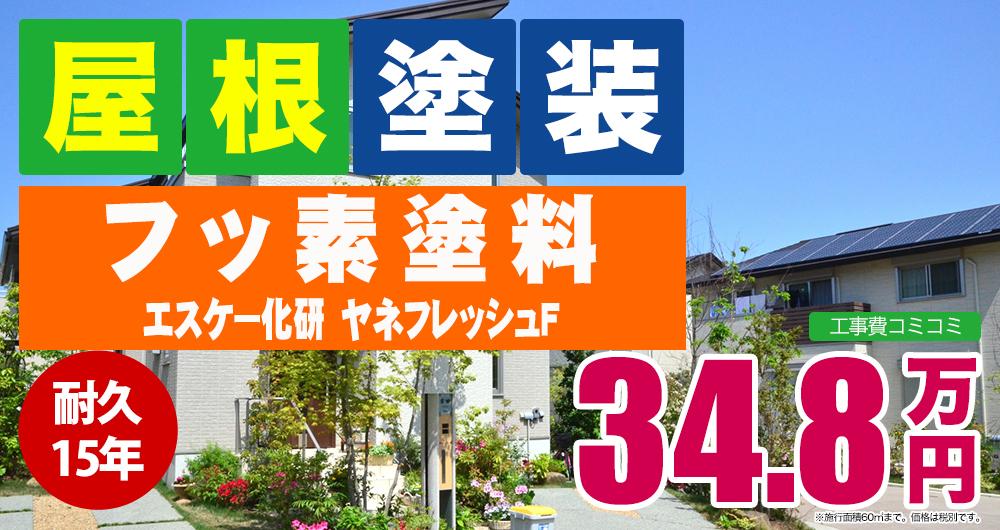 フッ素 エスケー化研 ヤネフレッシュF 348,000円